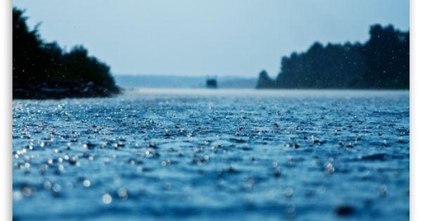 Summer Rain Wallpaper For Standard 4:3 5:4 Fullscreen UXGA