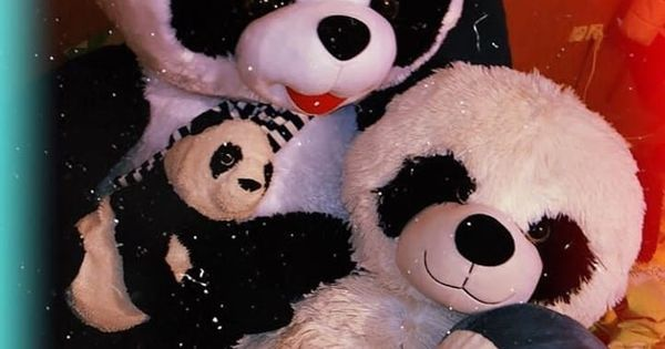 Pin By Princess On Dp Z For Girls Boys Teddy Bear Pictures Cute Panda Baby Cute Baby Couple