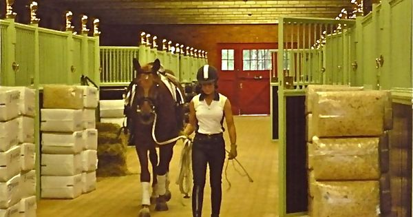 how to ride a good dressage test