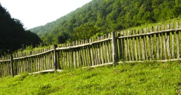 How To Stain Fences With Sprayers Fence Decor Outdoor Garden Bridge