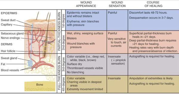 neurogenic shock case study