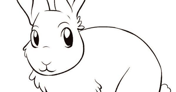 Haschen Malvorlagen Ausmalbilder Hasen Dekoking Com 12 Bible Lessons Ausmalbild Hase Malvorlagen Tiere Tiere Malen