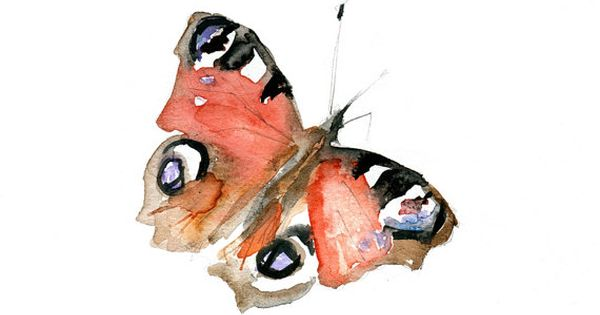 Watercolor painting of a butterfly art print zen for Dujardin zebre