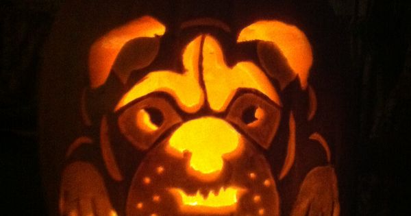 English Bulldog Jack O Lantern My Stuff Pinterest