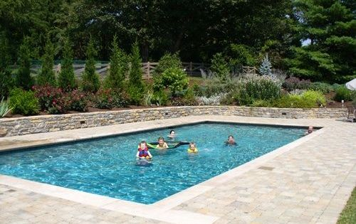 Pool Privacy Ideas hide your alluminum pool fence with pampas grass | pool fencing