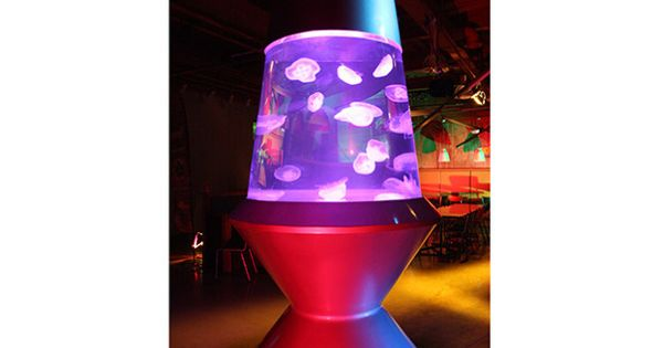 The Tanks Of Tanked Lava Lamps Jellyfish Tank And Lava