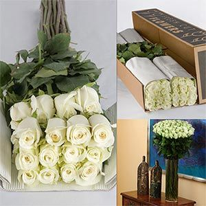 89 For 100 White Roses Could Order For Decorations Or