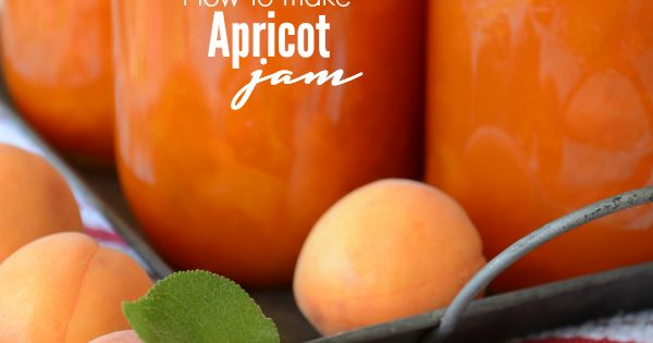 Apricot Jam and Printable Jam Labels | Pinterest | The ...