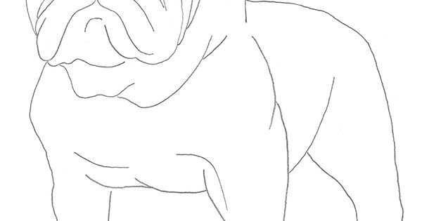 How To Draw A Bulldog good for week 1 of Little House in