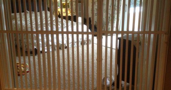 Tall Pet Door Cat Gate 72 Quot High Fur Babies