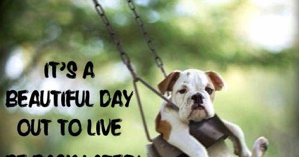 Beautiful Day Live Embrace Life Take Chances Enjoy