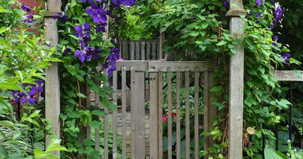 Ideas for that narrow space in between suburban homes, flowers, vines, gardening,
