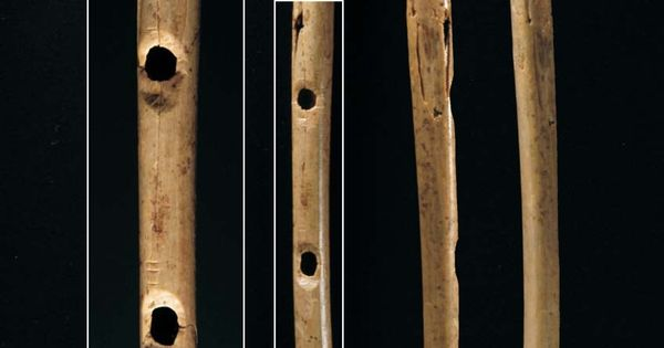 An overview of the oldest known musical instrument