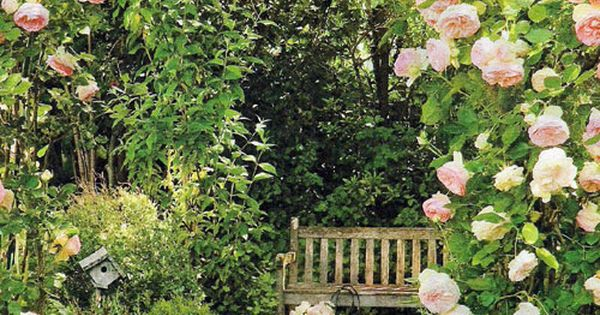 peony garden arch bench pathway walkway flowers pink arch sitting