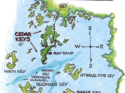 Cedar key florida redfish fishing cedar key florida for Cedar key fishing