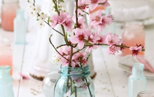 vintage blue mason jars + pink flowers = perfection. Love the colors
