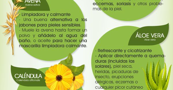 Infograf a plantas para cuidar la piel de - Hogarutil plantas ...