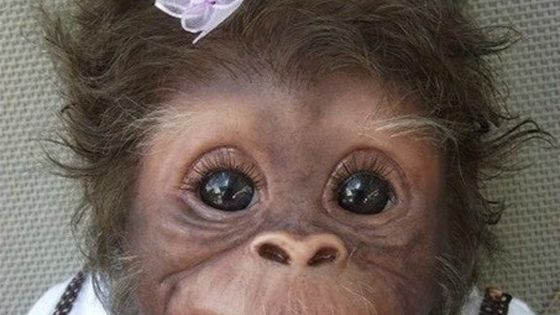 This cutie looks like my girlfriend when she was born! (I'm not