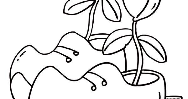 Kleurplaat Klompen Met Tulpen Hou Van Holland