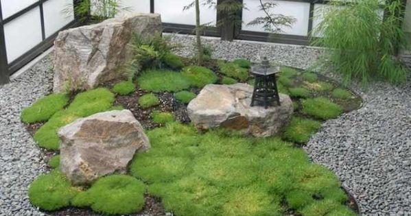 Jardin zen plantes et compositions harmonieuses en - Jardin zen plantes ...