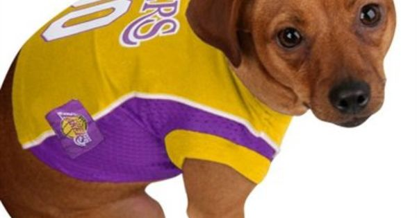 Find Out How You Can Save Up To 14% On All of Your LA Lakers gear ...