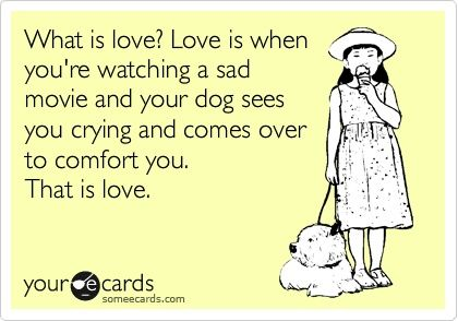 pets always know when you need love :) I want a puppy!