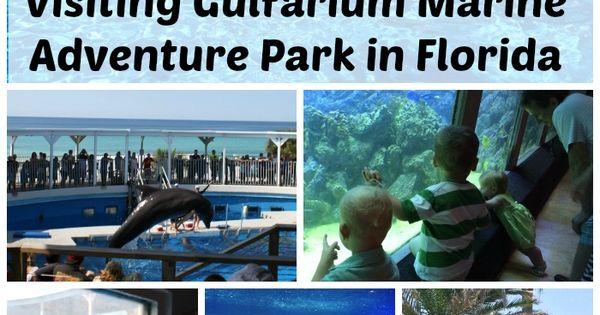 Visiting The Gulfarium Marine Adventure Park In Fort