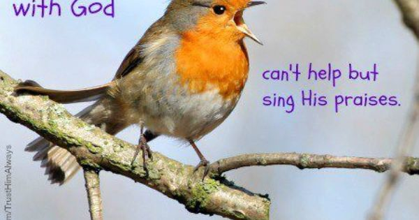 Life Lists Birds Wildlife Photography Inspirational Music Quotes