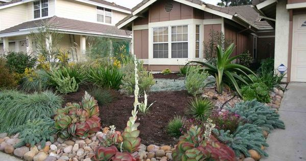 Drought resistant front yard using rocks bark and plants for Landscaping rocks sacramento