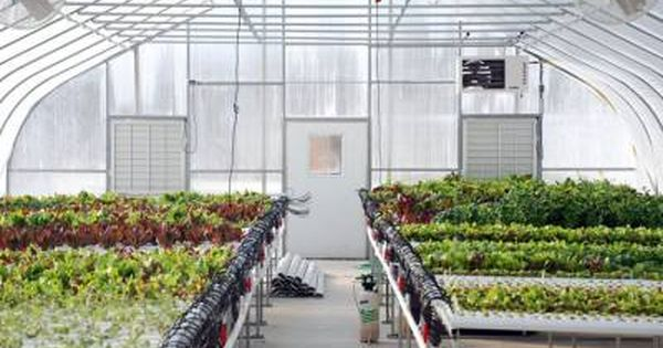 Getting The Most Out Of Your Greenhouse S Heating And Cooling