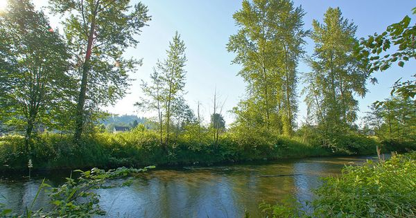 Pilchuck river snohomish wa rivers for Snohomish river fishing