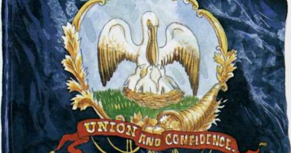Image result for 13th louisiana infantry pelican flag