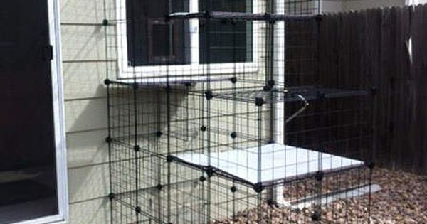 Do It Yourself House Drafting: Build A Do-It-Yourself Outdoor Cat Enclosure Or Run Using