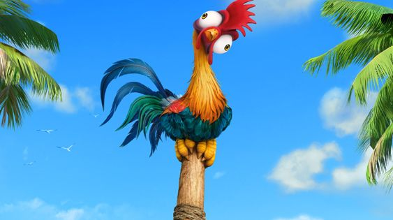 #HeiHei is the world's dumbest chicken :] #Moana's # ...