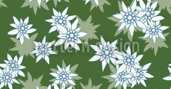 Edelweiss Green Vector Design Edelweiss Edelweiss Flower Vector Pattern