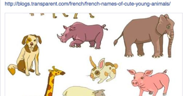 French Names For Baby Animals Young Animal Animals Baby Animals