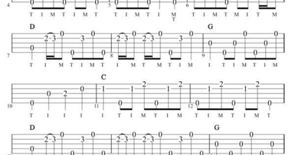 Dueling Banjos 04/02/2006: Banjo Guitar: Traditional Bluegrass Flatpick: Intermediate Dueling ...