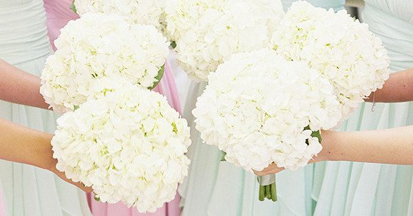 hydrangea bouquets with soft pastel dresses