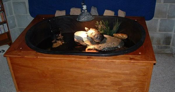 More Info On Homemade Turtle Ponds Including Specs On