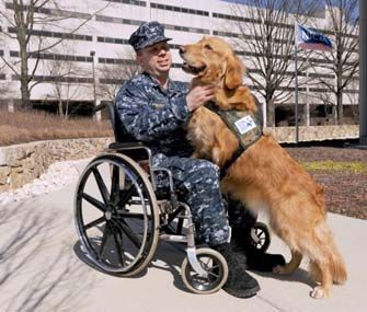 Veterans Training Service Dogs For Other Veterans Military