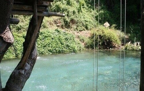 Pool that looks like a backyard pond or river. With a swing!