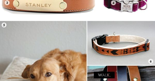Fancy dog accessories, the plated collars and leashes are perfect - I