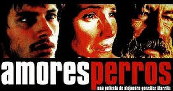 Amores Perros Pelicula Completa Hd Movies Thriller Film Music Book