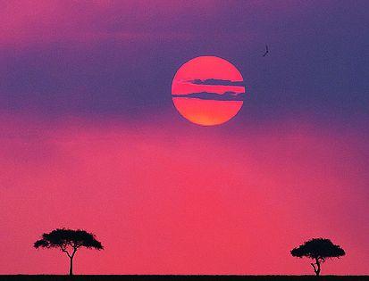 Sunset over the Maasai Mara game reserve, Kenya (such a beautiful simplistic