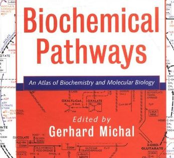 Biochemical Pathways An Atlas Of Biochemistry And Molecu Https Www Amazon Com Dp 0471331309 Ref Cm Sw R Pi Dp Biochemistry Molecular Biology Biochemical