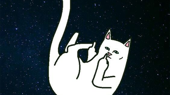 Ripndip nermal Wallpapers chidos Mis Wallpapers Chidos