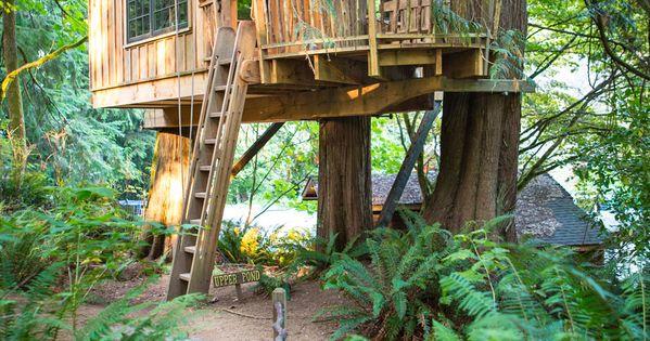 On a tous un jour r v de construire une cabane dans les - Construire une maison dans un arbre ...