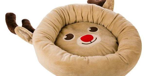 Petsmart Martha Stewart Kong Dog Bed Clearance 5 97 Store Pickup Ymmv Kong Dog Bed Dog Bed Pet Bed