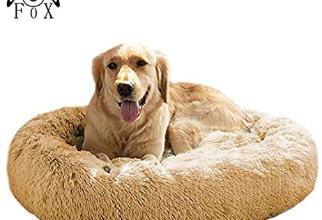 Amazon Com Mfox Calming Dog Bed Xl Xxl For Medium And Large Dogs Comfortable Pet Bed Faux Fur Donut Cudd In 2020 Faux Fur Dog Beds Orthopedic Dog Bed Cool Dog Beds