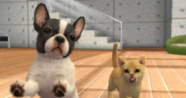 Nintendogs Cats 3ds Cat Breeds Cat Pics Cute Cats
